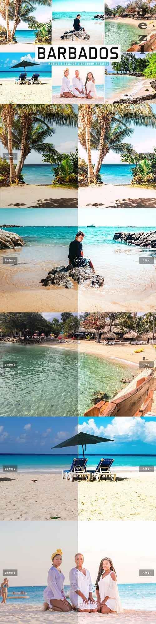 Barbados Pro LRM Presets - 5498215 - Mobile & Desktop