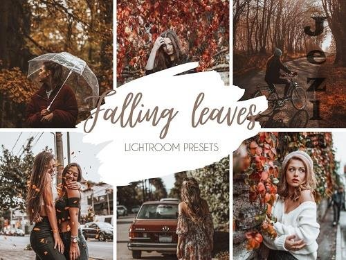 CreativeMarket - Falling Leaves Mobile & Desktop LRM Presets 5461468