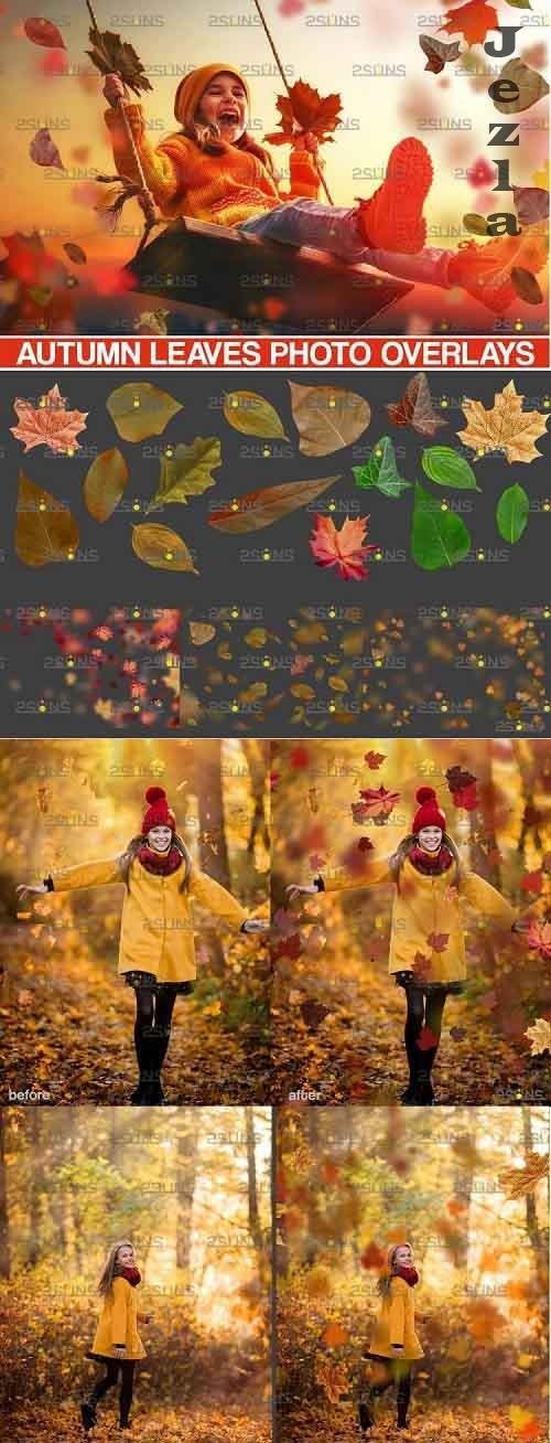 Autumn overlays, Leaf clipart, realistic leaf photo overlay - 952781