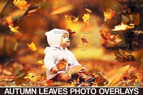 Autumn leaves overlay & Falling leaf, Photoshop overlay - 950553