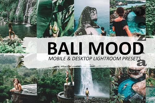CreativeMarket - Bali Mood LRM Preset 5570074