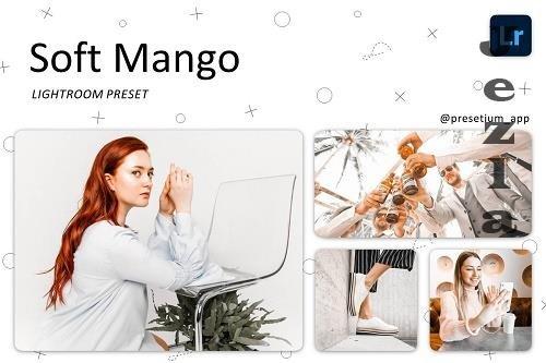 CreativeMarket - Soft Mango - Lightroom Presets 5219732