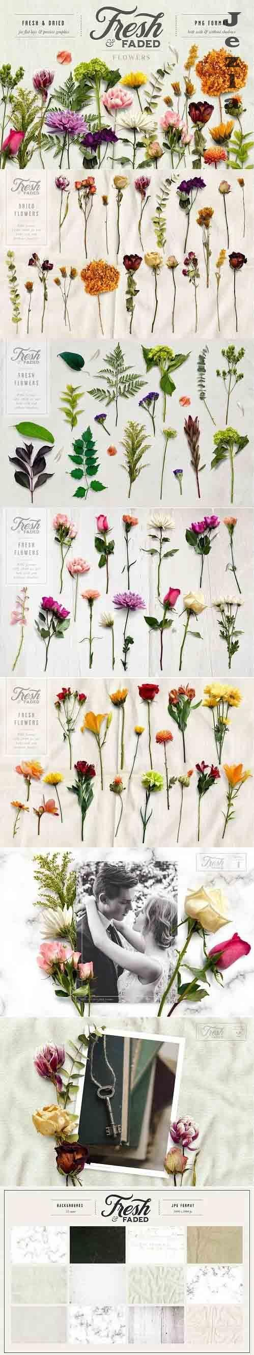 CreativeMarket - Fresh & Dried Flower Flat Lay 5350737