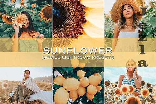 CreativeMarket - 5 Sunflower Lightroom Presets 5699020