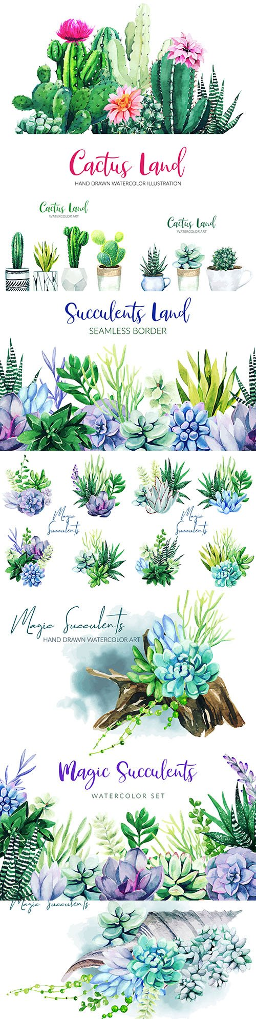 Cactus and tropical flowers design watercolor illustrations