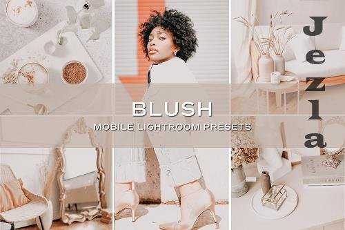 CreativeMarket - 5 Blush Lightroom Presets 5701707