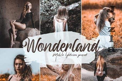 Wonderland Lightroom Presets - 5676554