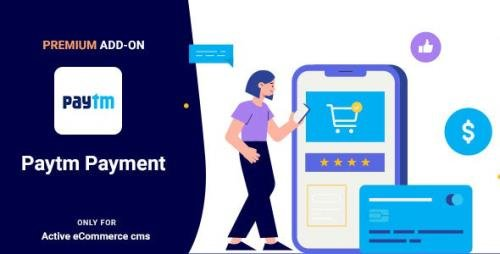 CodeCanyon - Active eCommerce Paytm add-on v1.0 - 26480766
