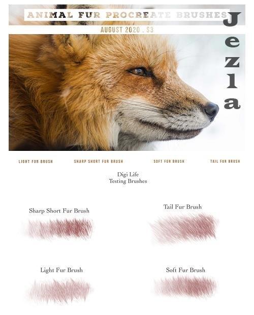 Animal Fur Procreate Brushes - 5322493