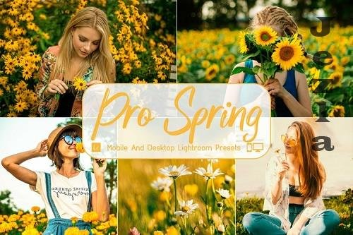 Pro Spring Mobile And Desktop LRM Presets - 1157467