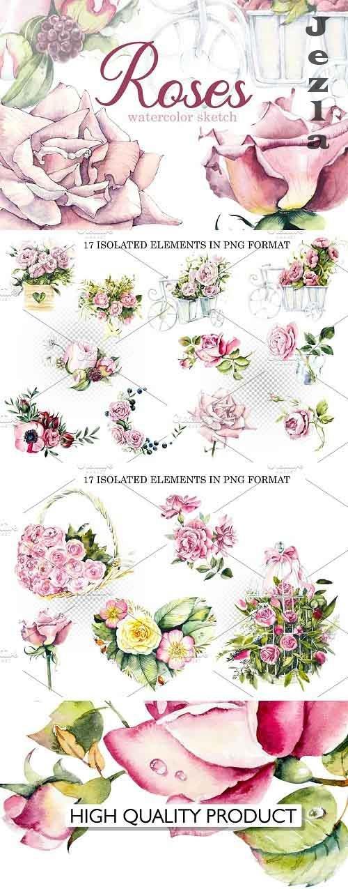 Watercolor Pink Roses - 5812854