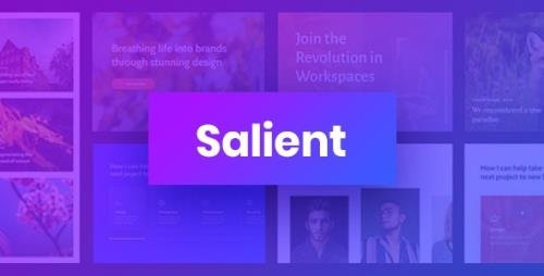 ThemeForest - Salient v12.1.6 - Responsive Multi-Purpose Theme - 4363266