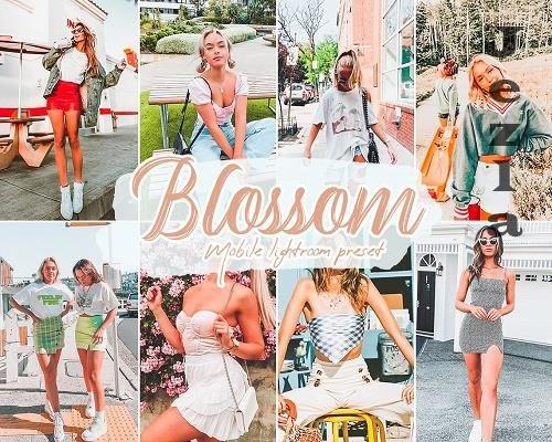Blossom Lightroom Presets - 5815693