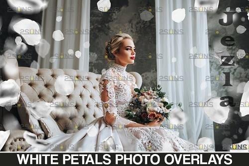 Falling Rose Petals Photo Overlays , White petals png - 1132977