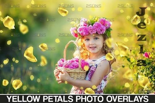 Falling Rose Petals Photo Overlays , Yellow petals png - 1132982