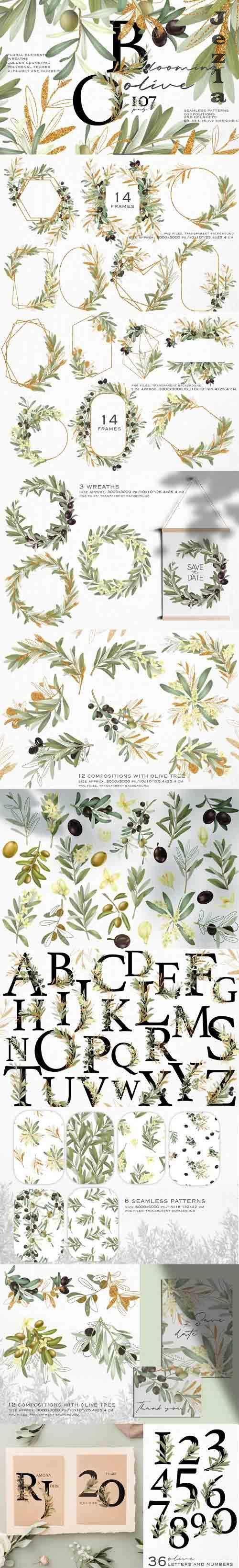 Blooming olive collection - 1213085