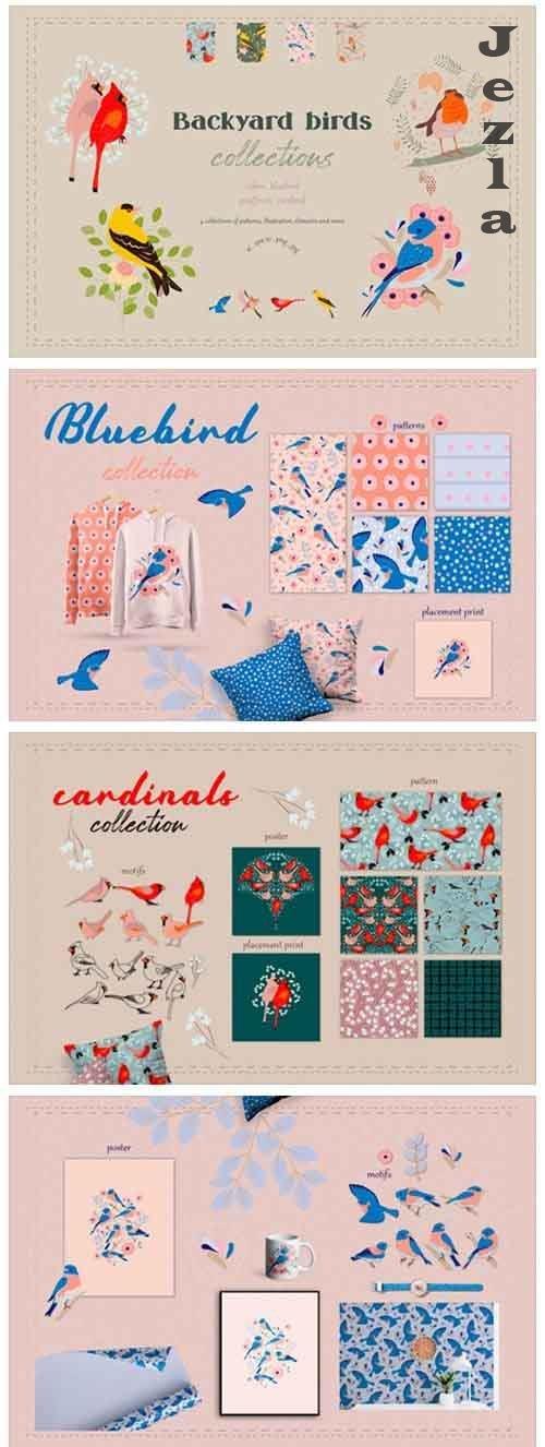Backyard birds collections - 5868126