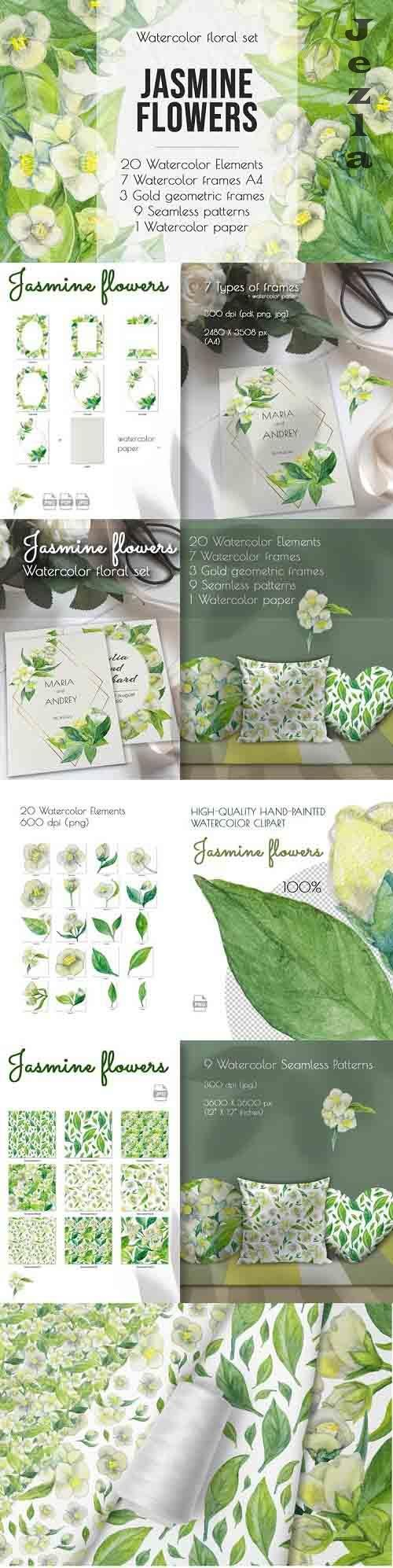 Jasmine flowers and leaves. Watercolor clip art - 864260