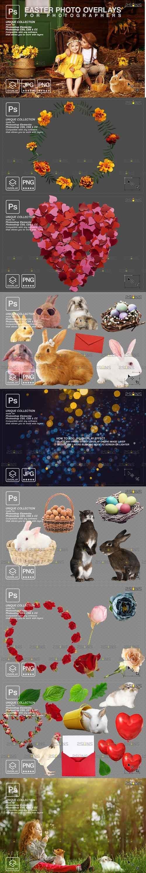 PHSP overlay Easter bunny overlay - 1222000