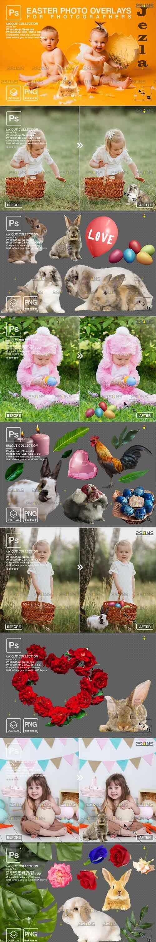 PHSP overlay Easter bunny overlay - 1222129