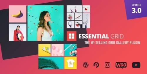 CodeCanyon - Essential Grid v3.0.11 - Gallery WordPress Plugin - 7563340