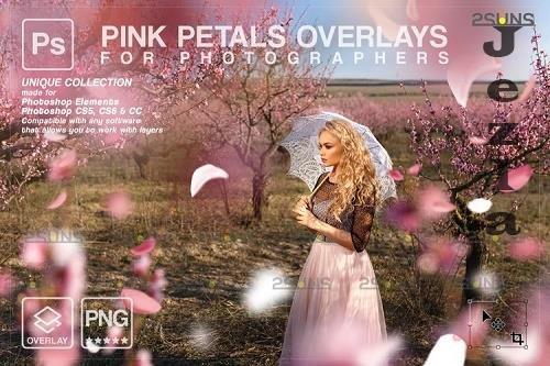 Falling Rose Petals Photo Overlays, Pink petals png - 1133528