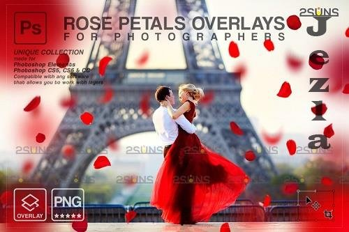 Falling Rose Petals Photo Overlays, Rose Petals, Red Rose - 1133526