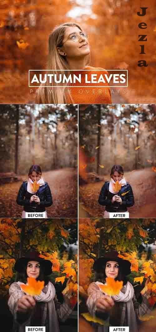 CreativeMarket - 40 Autumn Leaves Overlays 5928912