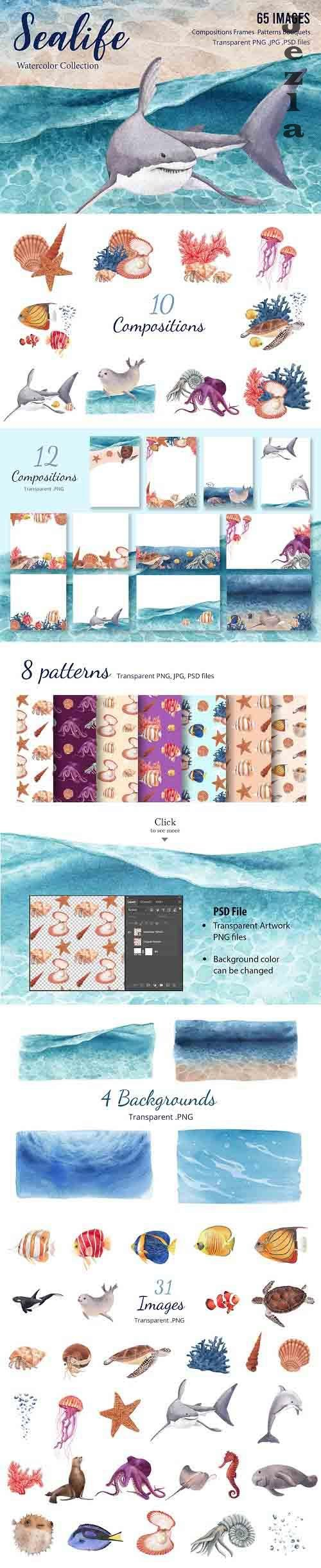 Sealife & Ocean Watercolor - 5932327