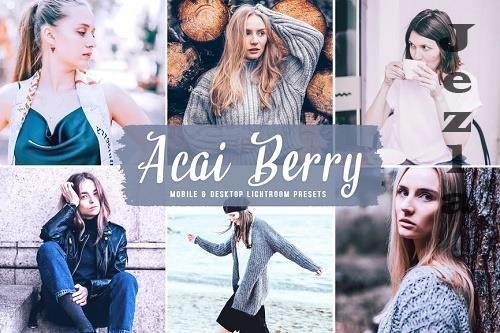 Acai Berry Mobile & Desktop LRM Presets