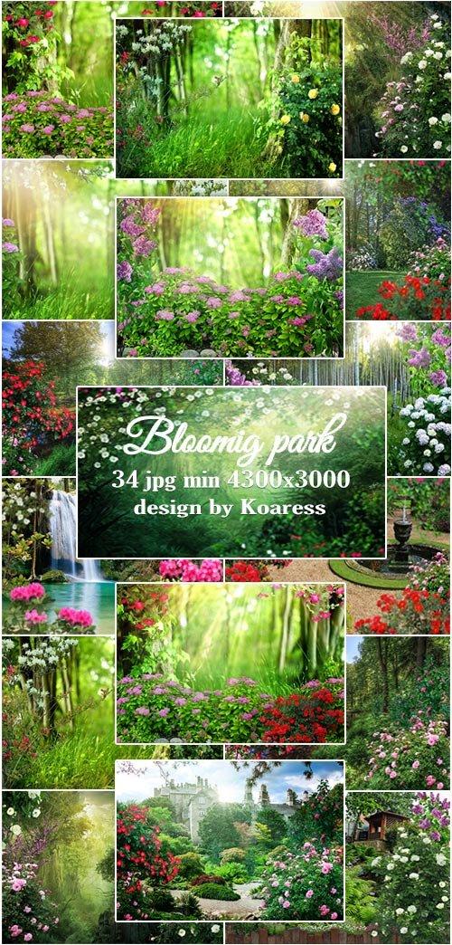 Фоны для коллажей Цветущий парк - Blooming park jpg backgrounds for collages