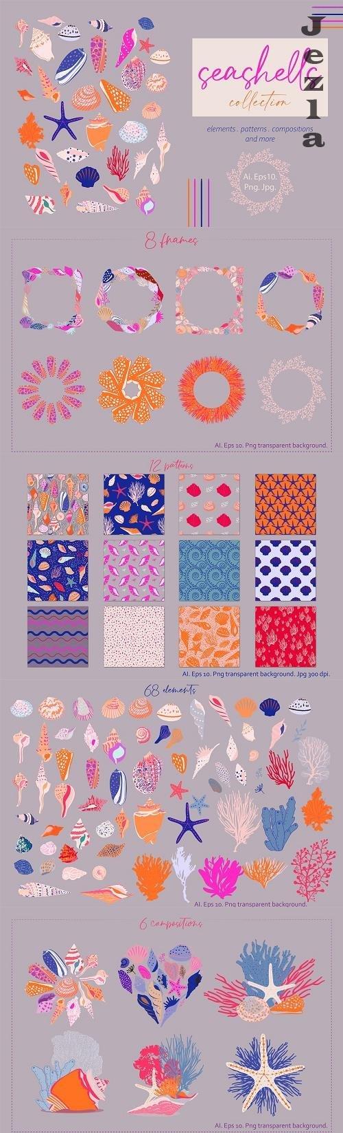 Seashells Collection - 5962683
