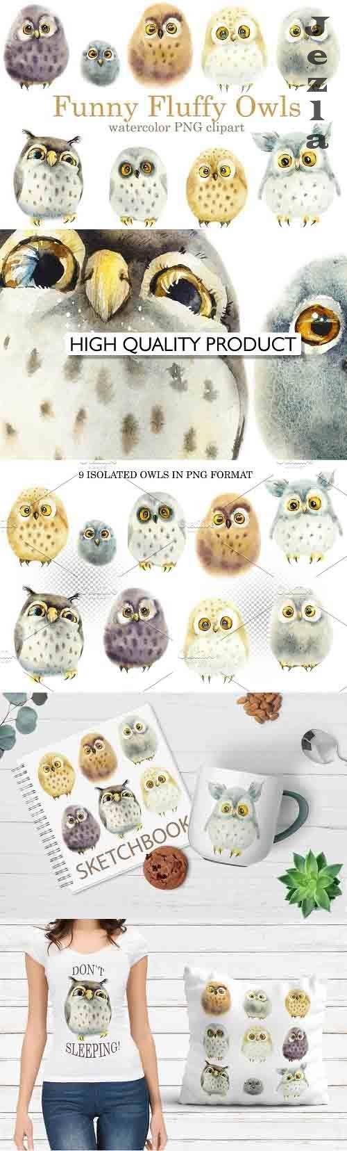 Watercolor Funny Owls - 6022757