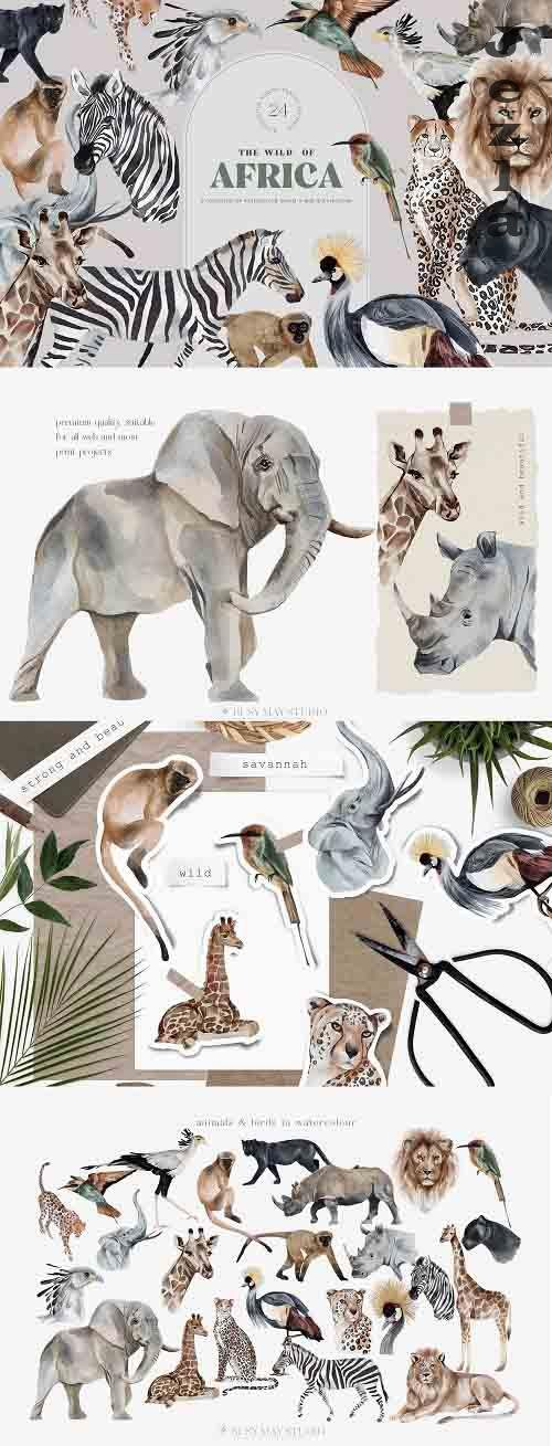 Wild Animals of Africa Illustrations Watercolor PNG - 1318248