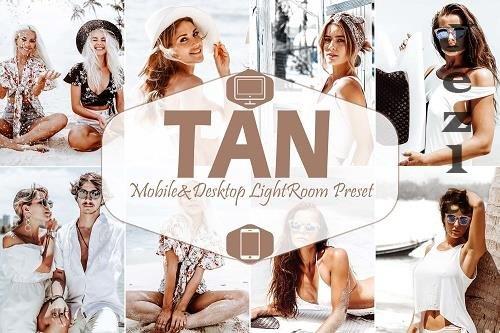 10 Tan Mobile & Desktop LRM Presets, warm LR preset - 627931