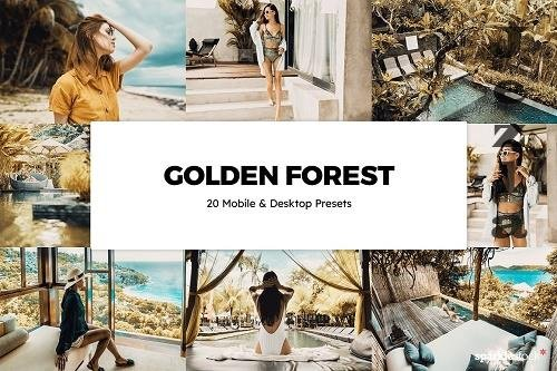 20 Golden Forest Lightroom Presets - 6100412