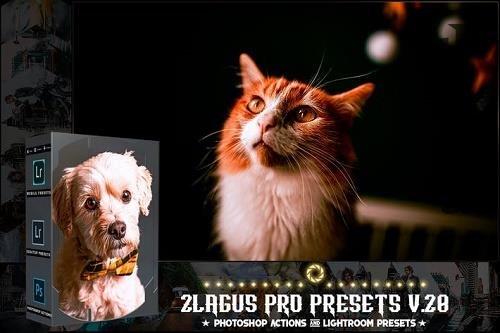PRO Presets - V 28 - Photoshop & Lightroom
