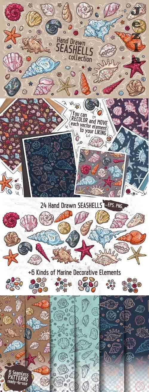 Seashells Collection - 1345586