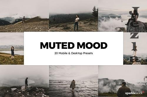 20 Muted Mood LRM Presets LUTs - 6131610