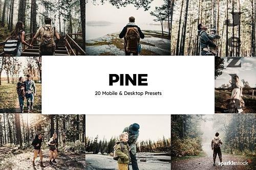 20 Pine LRM Presets & LUTs - 6137117