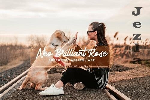 15 PHSP Actions ACR Presets Neo Brilliant - 1362728