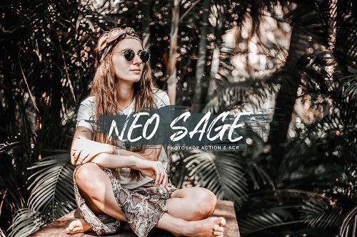 15 PHSP Actions ACR Presets Neo Sage - 1367740