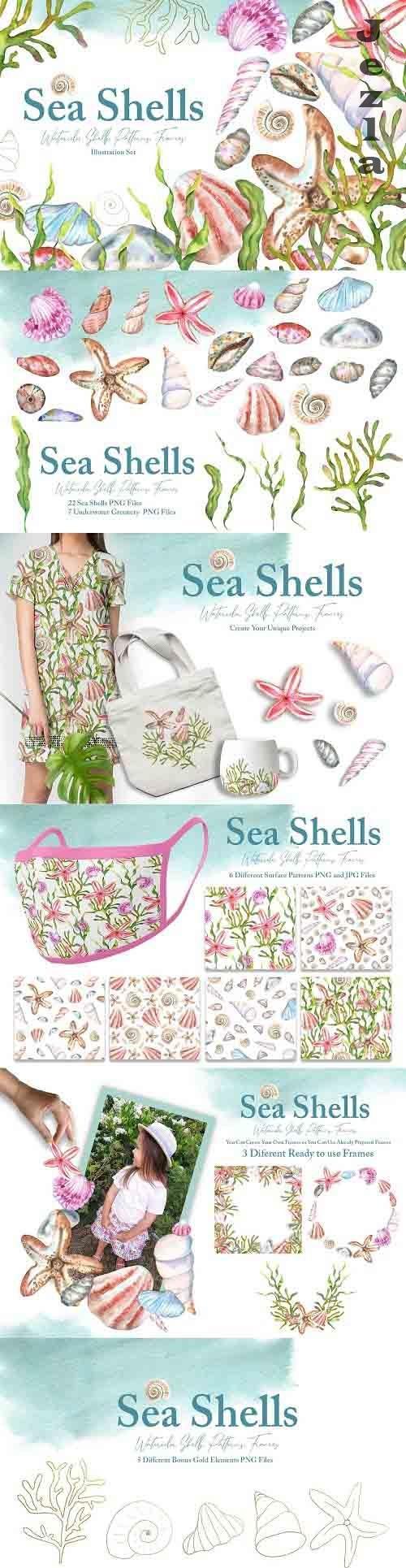 Watercolor Sea Shells Illustrations - 6181957