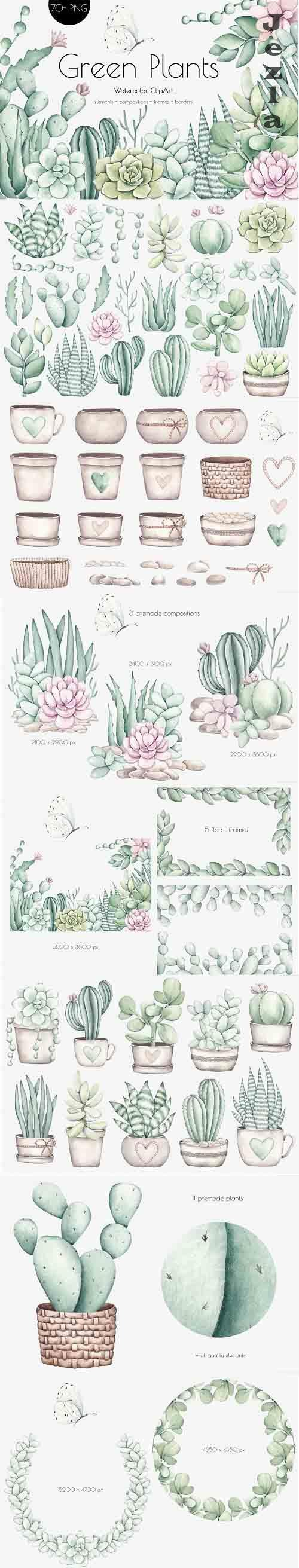 Watercolor ClipArt Green Plants - 1354890