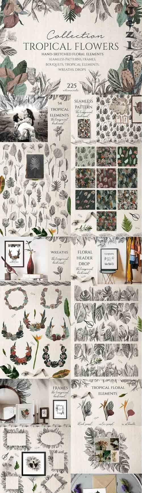 Tropical Flowers Collection - 5648678