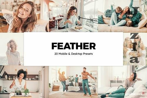 20 Feather LRM Presets & LUTs - 1409662