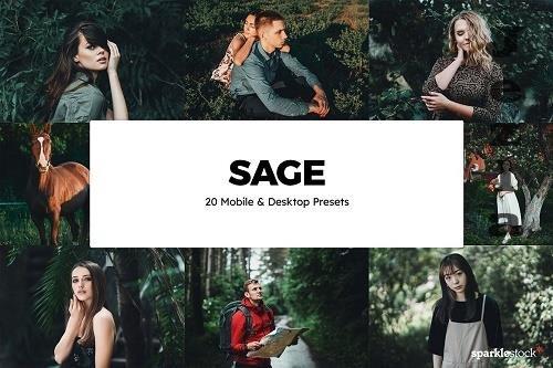 20 Sage LRM Presets & LUTs - 6225550