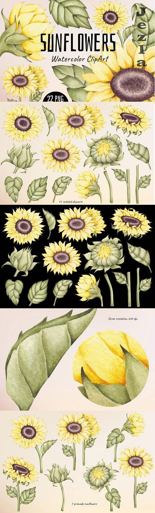 Watercolor ClipArt Sunflowers - 1436254