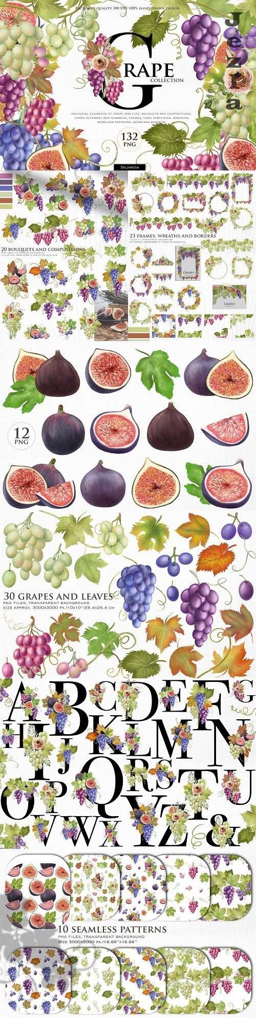 Grape collection - 6260638