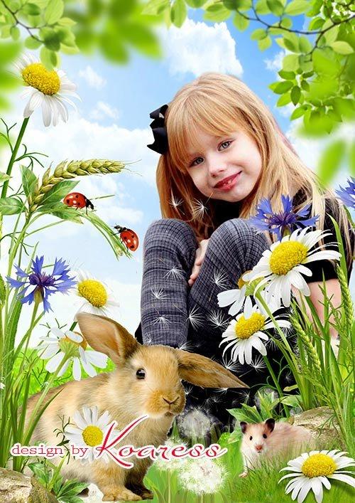 Детский коллаж для фото на природе - Летний луг